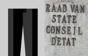 Ecouter: Le Conseil d'État est-il trop formaliste ?