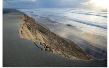 Droit administratif et lutte contre le changement climatique : des réponses locales à un enjeu global